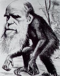 Charles Darwin as an ape, 1871