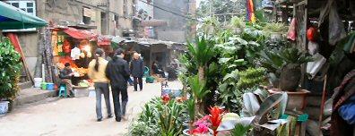 open air flower market